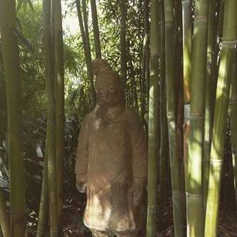 Bamboo Grove - Home